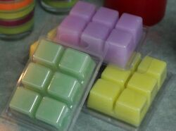 Soy Wax Melts  Tarts Candle Making Kit YOUR CHOICE OF SCENT! Home Craft Supply