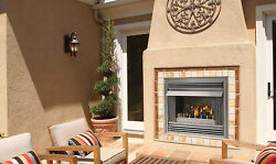 Napoleon Gas Fireplace Outdoor Riverside GSS36 36