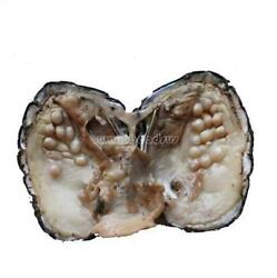 Hot Freshwater Love Wish Bulk Akoya Oysters with Large Pearls Gifts 10-20pcsLot
