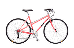 Handsome She Devil City 16 Speed Bicycle