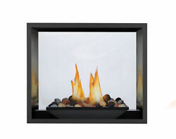 Napoleon HD81NT-1 High Definition 81 Direct Vent Gas Fireplaces