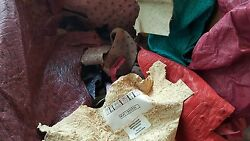 Exotic Leather-6lbs Of Genuine Ostrich Leather Scraps Small Pieces FREE SHIPPING
