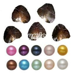 US Stock 10PC Natural Akoya Pearl Oysters With Real Pearl 7-8mm Freshwater Pearl