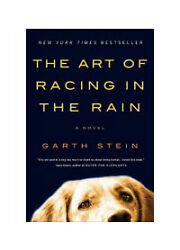 The Art of Racing in the Rain: A Novel by Stein Garth  Paperback