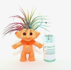 Rainbow Hair Troll With Fertilizer Plant Care Card Ships Free Great Gift $17.90