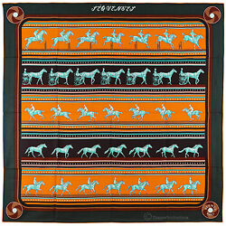 NEW Authentic Hermes Cashmere Silk Shawl SEQUENCES Cathy Latham Green
