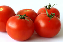 25 Cocktail Size Sweet Campari Tomato Seeds R 030 $2.70