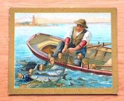 1910 Turkish Trophies - T57 Fable Series - The Great and the Little Fishes - EX-