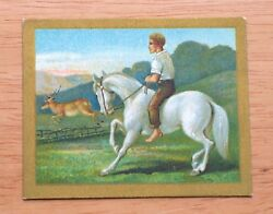 1910 Turkish Trophies - T57 Fable Series - The Horse and The Stag - ExMt