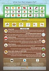 quot;What Can Red Wigglers Eat?quot; 13x19quot; Infographic Poster for Worm Composting Bins $19.95