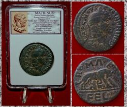 Ancient Roman Empire Coin MACRINUS She Wolf Romulus and Remus Rare Coin!