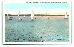 Postcard PA Conneaut Lake Sail Boats Lining Up For Race Oakland Beach G06