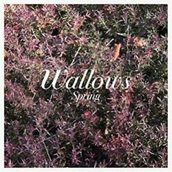 LIMITED EDITION Color Vinyl WALLOWS - Spring (2018) 12