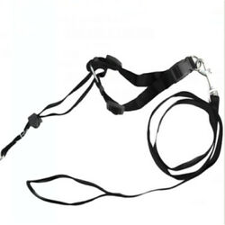 ANCOL DOG TRAINING HALTER  HALTI STYLE HEADCOLLAR IN 4 SIZES $8.16