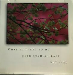 Susan Buffett: What is There To Do With Such a Heart But Sing CD Honey Bee *Good $41.25