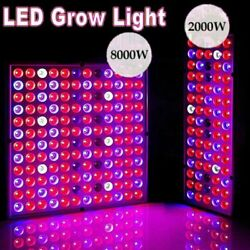 8000W LED Grow Light Hydroponic Full Spectrum Indoor Plant Flower Growing Bloom $23.99