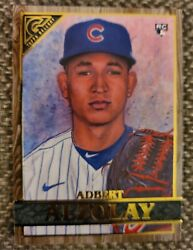 2020 Topps Gallery Adbert Alzolay RC WOOD BORDER PARALLEL Cubs No.108 $1.40