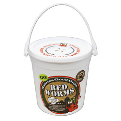 Natures Good Guys Red Worms quot;Red Wigglersquot; $26.64
