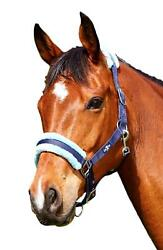 Saxon Element Fleece Padded Nylon Halter with Adjustable Nose and Throat Clip