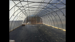 NEW 24 X 60 fT. FULLY BRACED GREENHOUSE KIT! 12 ft Ceiling ! Free Shipping T-T