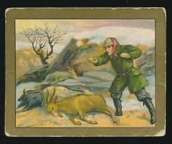 1910 T57 Turkish Trophies FABLE SERIES (1-50) -The Wild Goats & The Goatherd