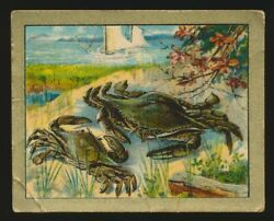 1910 T57 Turkish Trophies FABLE SERIES (51-100) -The Crab & The Her Mother