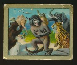 1910 T57 Turkish Trophies FABLE SERIES (51-100) -The Monkey & The Camel