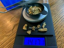 Paydirt w 2 grams of gold guaranteed nuggets added included in the weight. $129.99