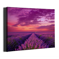 PKONE Lavender Canvas Framed Wall Art Decor Purple Floral Painting Rustic Flower $26.88