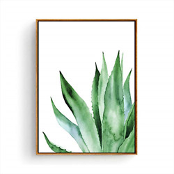 Hepix Canvas Wall Art Agave Succulent Wall Paintings Green Plants Print Framed $44.43