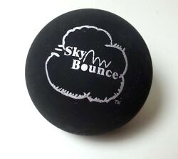 10 SKY BOUNCE BLACK COLOR HAND BALLS RACKET BALL NEW $15.99