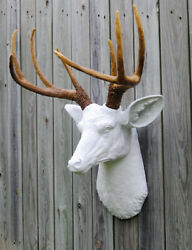 Union Rustic Deer Head Antlers Faux Taxidermy Wall Décor