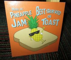 PINEAPPLE JAM BAND: BEST SERVED ON TOAST MUSIC CD 10 GREAT TRACKS OFF THE WALL