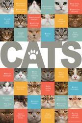 A Z of Cats Cute Pets Poster 12x18 inch $10.99