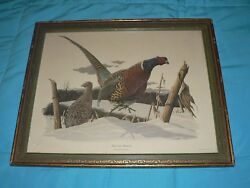 Antique Vintage Ring Necked Pheasant Etching Richard Sloan Wade Collection Plate