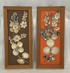 Kitschy Sea Shell Floral Wall Designs Wood Frame Brown Orange Background $25.00