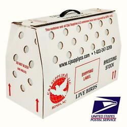 Live Bird Vented Shipping Box USPS Approved Poultry Pigeons amp; Canaries $19.50