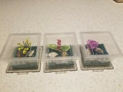 3 Mini enclosure for spider baby praying mantis or insect pet $13.99