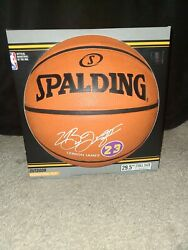 Spalding Outdoor Full Size 29.5 LeBron James Lakers #23 Basketball $20.00