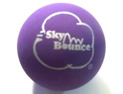 10 SKY BOUNCE PURPLE COLOR HAND BALLS RACKET BALL NEW $15.99