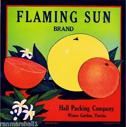 Winter Garden Florida Flaming Sun Orange Citrus Fruit Crate Label Art Print $7.19