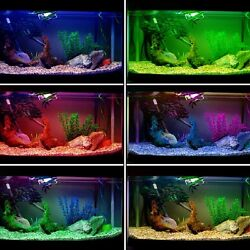 FISH TANK LIGHTING Heat Proof Coloured Effects Transparent Acetate Gel Sheet NEW $11.50