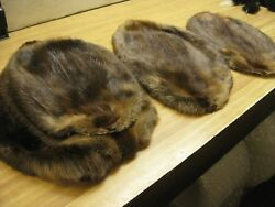 Tanned Beaver Hide Beautiful { Natural } From Canada First Time gt; Red Id Tag $34.99