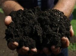 Local Organic Compost Fertilizer Compost Starter 1 Gallon $8.00