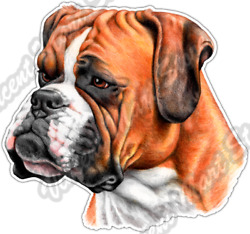 Cute Boxer Face Dog Dogs Pet Animal Breed Car Bumper Vinyl Sticker Decal 4.6quot; $3.50