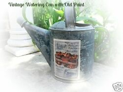 Antique Vtg Garden Watering Can with Old Blue Paint & Cart of Peaches Label