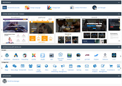 Web Hosting for 12 month 1Year cPanel Web Builder Unlimited Domain AUTO SSL $3.74