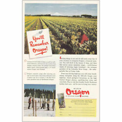 1950 Oregon: Commercial Bulb Fields in Bloom Vintage Print Ad