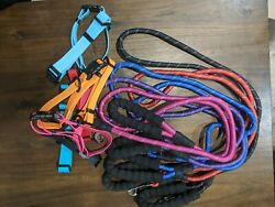 Bulk dog leashes and collars $40.00