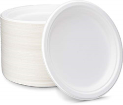 Enviroware White Bagasse Plates 125 Count 9 Inch Compostable Plates Made From $37.20